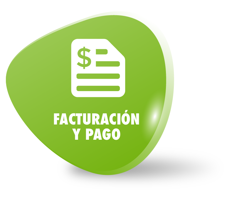 FacturacionYPago-01